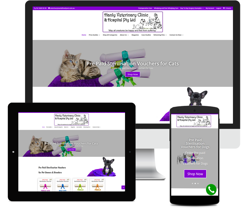 Hanly Veterinary Clinic Website Designed by Liz Maclean